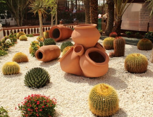 Песок для цветов и растений. Флорариум и кварцевый песок.