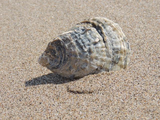 Песок и его виды