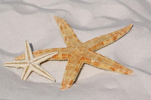 Песок и его виды. Что вам нужно знать о песке?